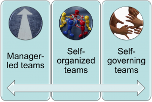self-organizing teams