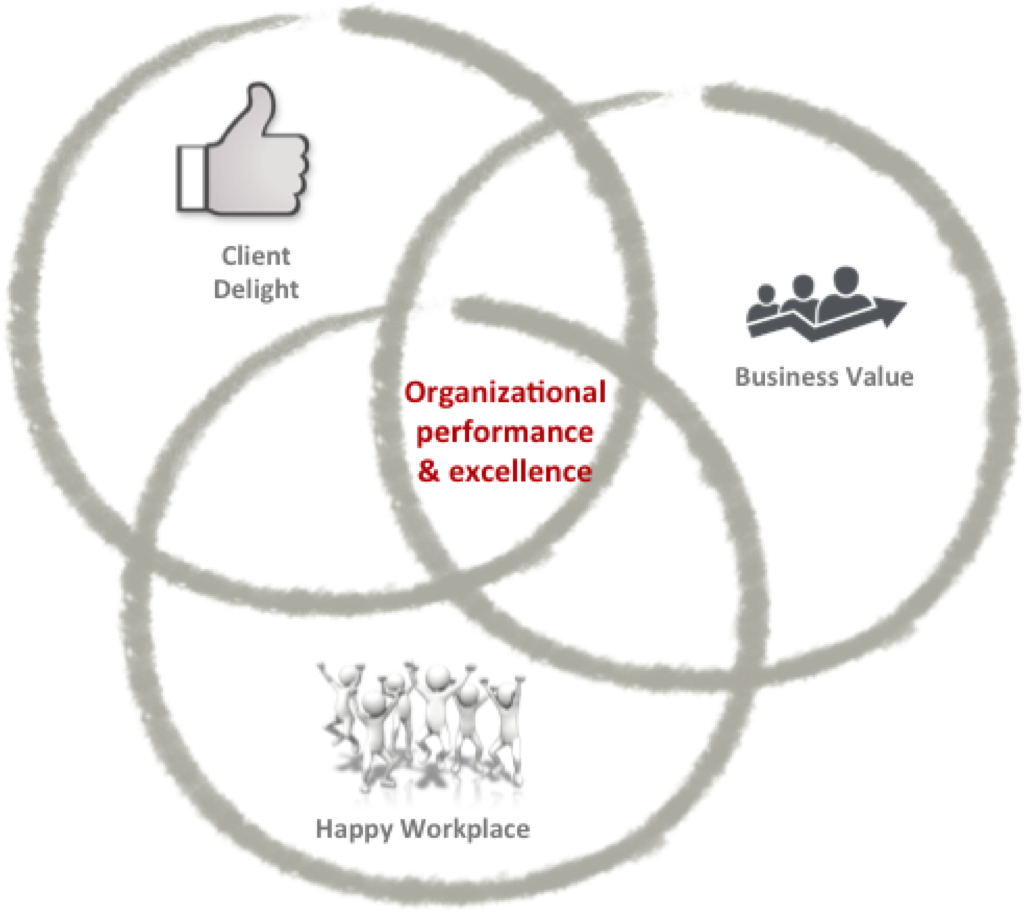 Venn Diagram - Org. Excellence